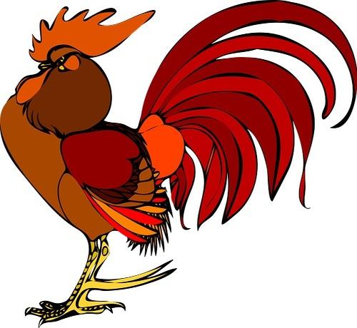 Shio Togel Ayam
